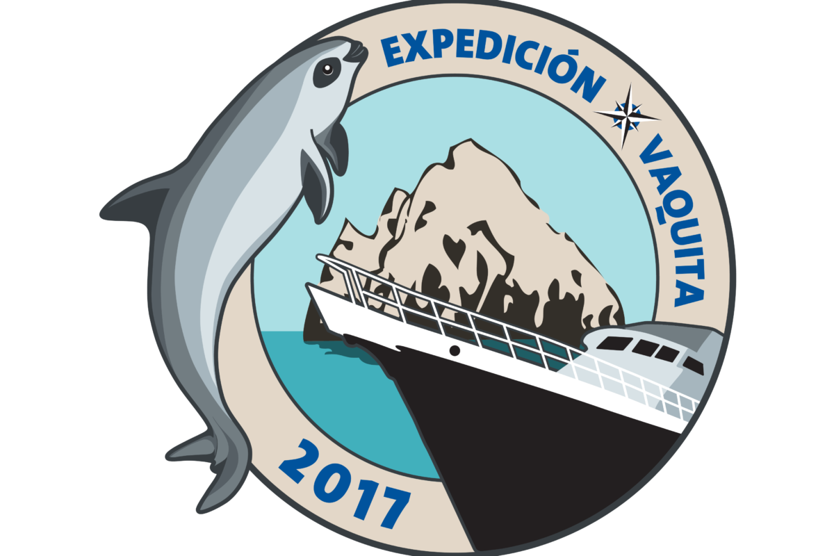 Expedición vaquita 2017: al rescate del cochito
